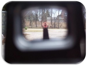 AR-15 Holographic Sights