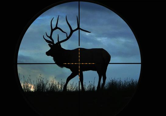 best hunting scope1